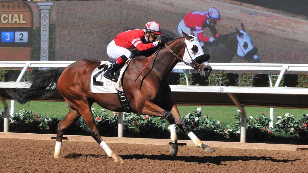 del mar horse racing season