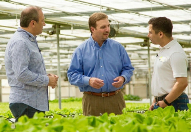 Souplantation Serving Organic Lettuce From Innovative