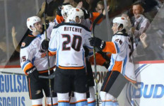 San Diego Gulls players are congratulated after their victory over the Stockton Heat. Courtesy San Diego Gulls