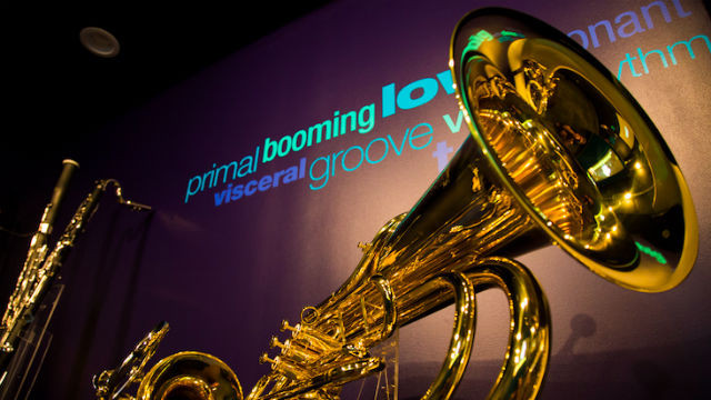 """LOW: The Power & Beauty of Bass"""" at the Museum of Making Music in Carlsbad. Photo by Diana Sciacca"""