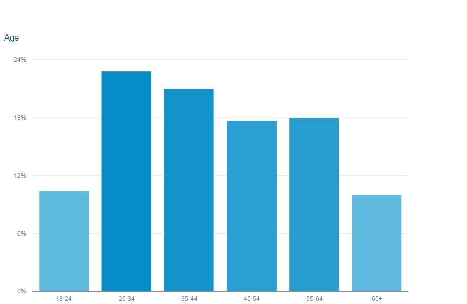 Chart from Google Analytics shows the age distribution of readers in October.