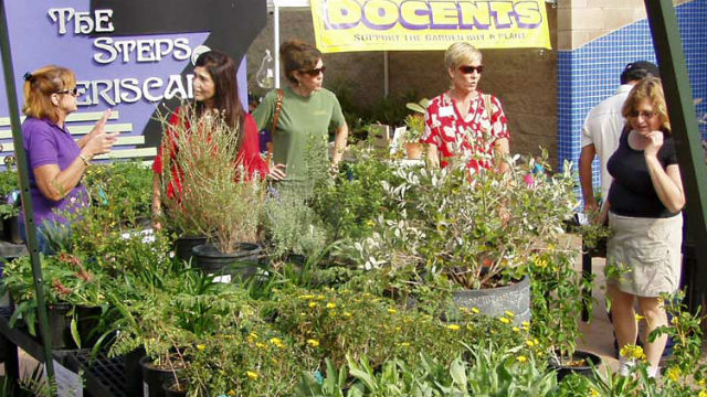 The Water Conservation Garden's annual fall plant sale offers the region's widest selection of drought-tolerant plants. Courtesy of the Water Conservation Garden