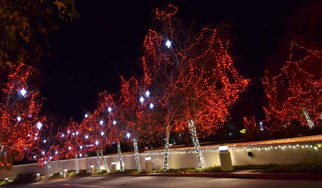 How Mormon Volunteers Launch the Best Christmas Lights in San Diego ...