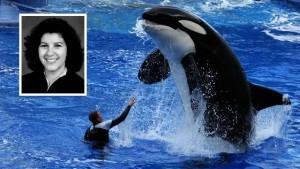SeaWorld Orlando show with Judge Catherine Ann Bencivengo (inset)