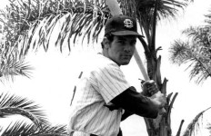Kerry Michael Dineen as a Univertsity of San Diego baseball star in the early 1970s. Photo via usdtoreros.com