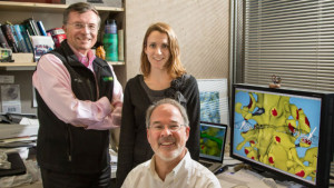 Salk reserarchers Terry Sejnowski (left), Cailey Bromer and Tom Bartol. Courtesy Salk Institute