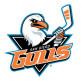 San Diego Gulls logo