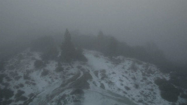 Fog and snow on Palomar Mountain on Wednesday morning. Courtesy UCSD HPWREN camera network