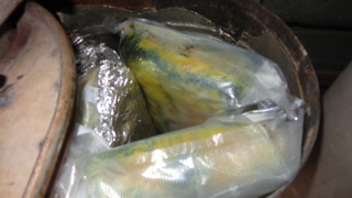 About 33 pounds of cocaine was seized at the San Clemente checkpoint, Feb. 4, 2016. Courtesy of U.S. Border Patrol