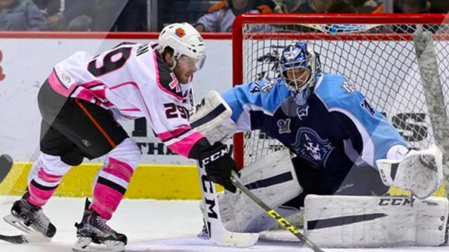 Gulls beat the Admirals 4-1. Photo Credit: San Diego Gulls