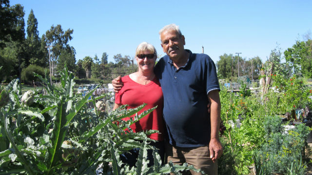 Vendla Anderson and Raad Karem in the community garden. Photo by Mimi Pollack