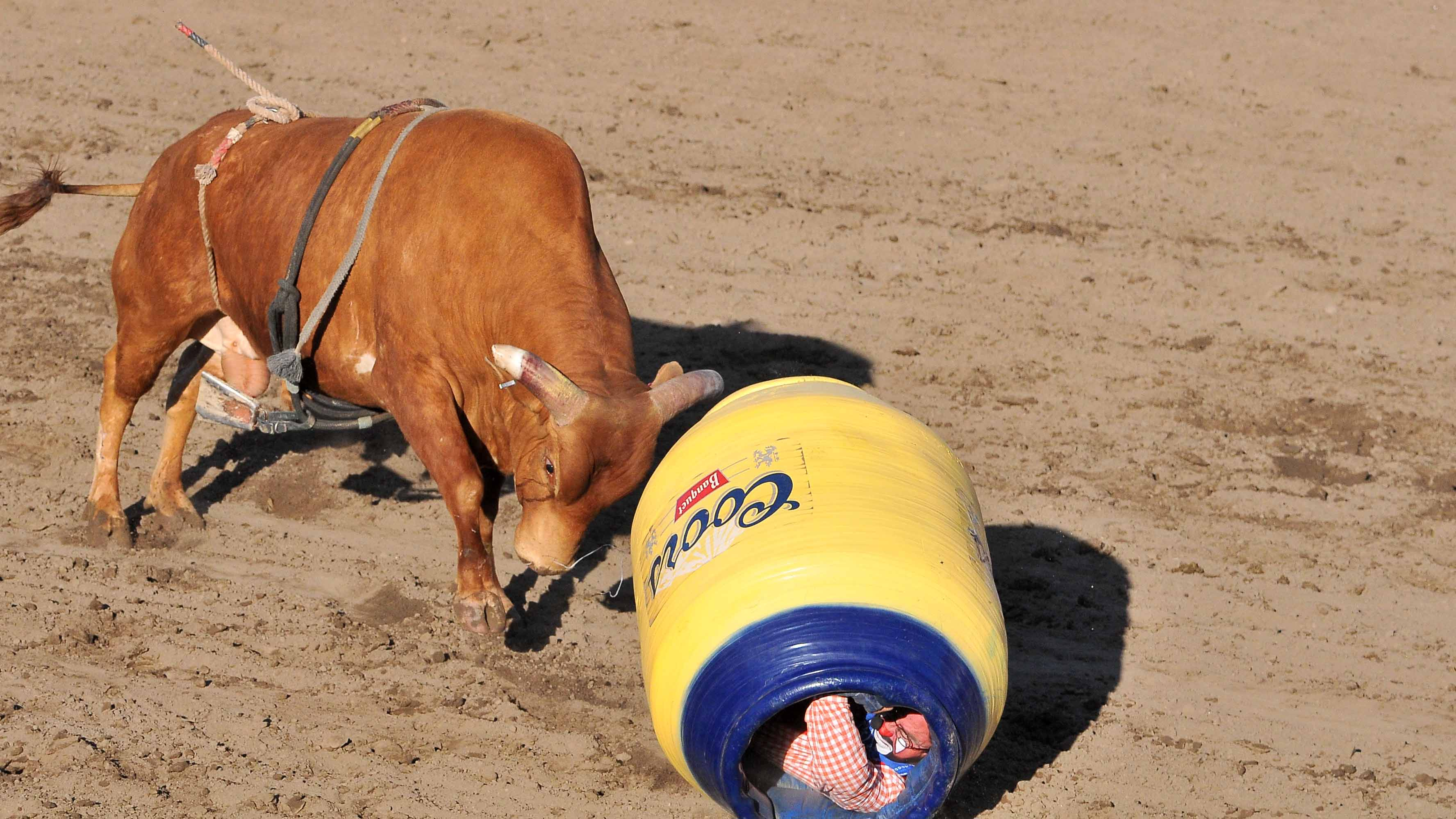 Barrels Of Fun In Ramona Rodeo Highlights In Photos