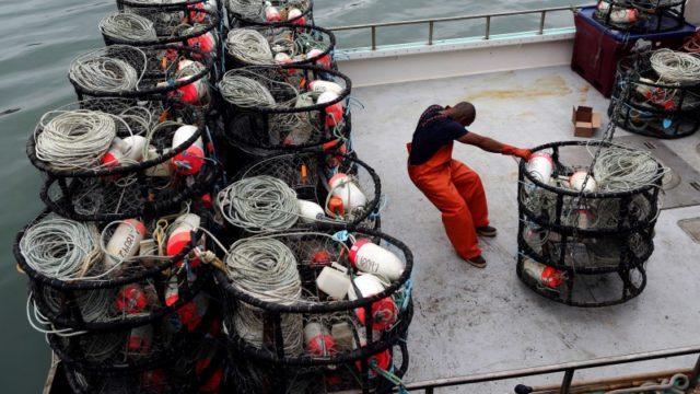A fisherman loads crab pots onto a fishing vessel. REUTERS/Robert Galbraith