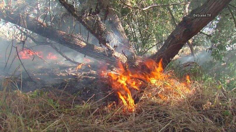 Βούρτσα Φωτιά Δυνάμεις Σύντομη Εκκένωση των Σπιτιών στο Redwood Χωριό