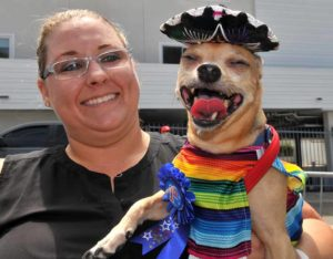 Peanut, a Chihuahua mix, won first place in the best dressed contest at the Cardiff Dog Days of Summer event. Photo by Chris Stone