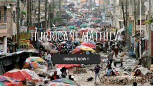 Homepage image from International Rescue Team of San Diego.