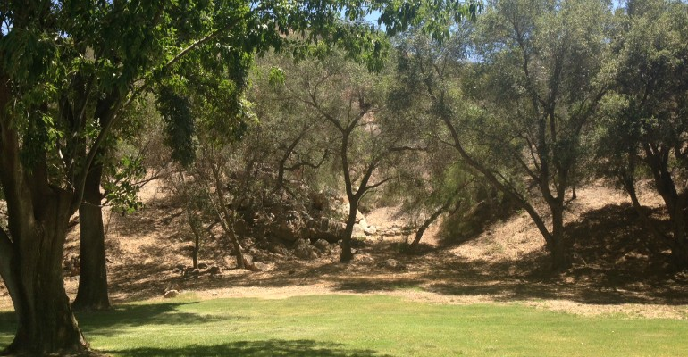 El Monte County Park in Lakeside. Photo: County of San Diego Parks and Recreation