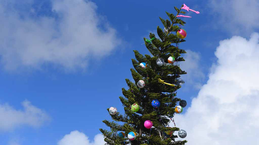 Christmas tree recycling options in LaGrange