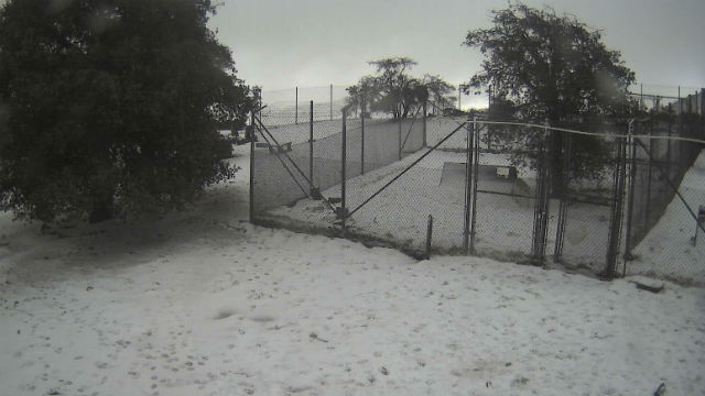 Snow at the California Wolf Center outside Julian on Monday morning. Courtesy UCSD HPWREN network