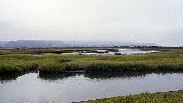 The Tijuana river. Photo via Osbomb from Wikimedia Commons.