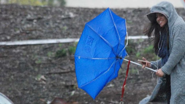 A UCSD student struggles with her umbrella amid high wind. Photo by Chris Stone