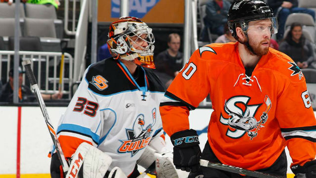 Action on the ice Sunday night in San Jose. Courtesy San Diego Gulls