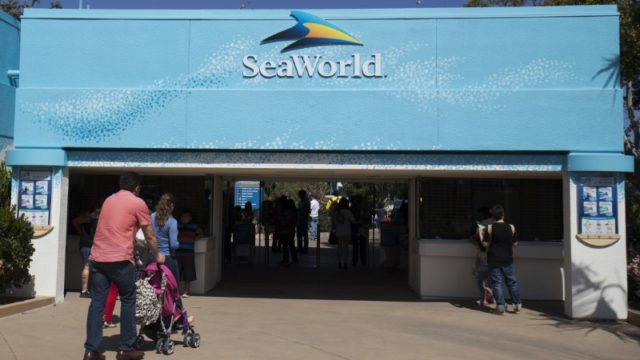 Visitors attend enter SeaWorld in San Diego, California.   REUTERS/Mike Blake