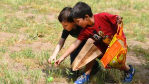 Two boys go for plastic Easter eggs during an egg hunt at El Monte County Park in Lakeside. Photo by Chris Stone