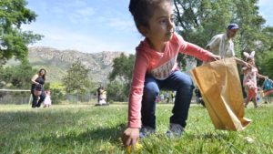 About 30 local children scurried to gather plastic eggs at El Monte County Park in Lakeside. Photo by Chris Stone