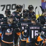 San Diego Gulls celebrate victory