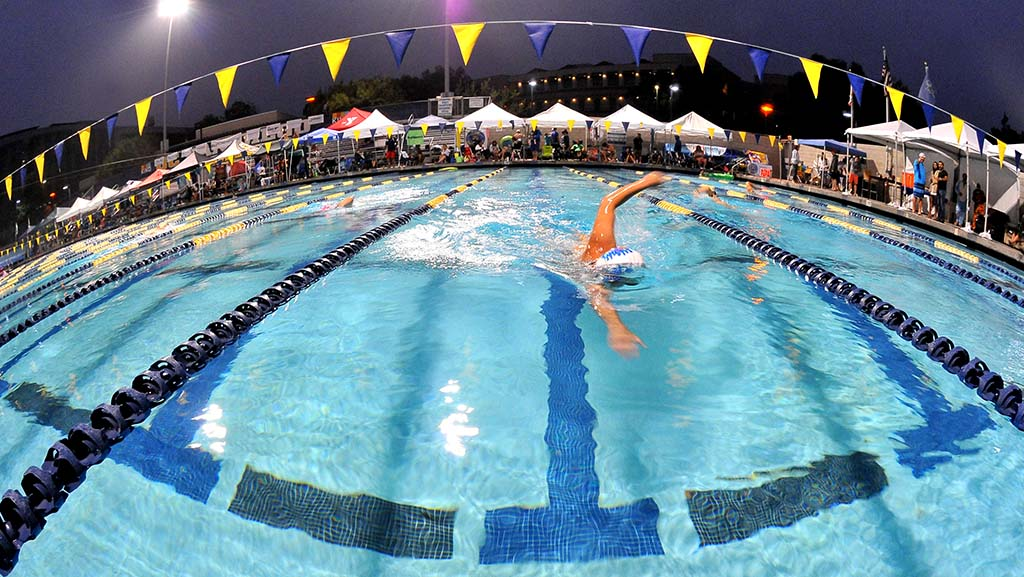 Swimmers at the 2017 challenge logged 29,869 laps (not counting cameos).