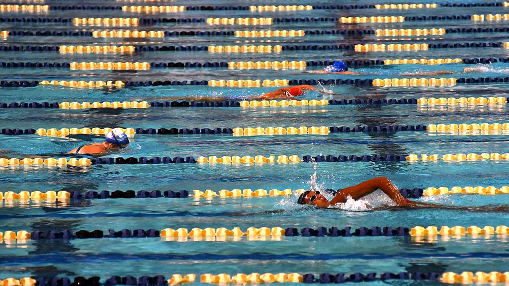 Swimmers cross paths many times in separated lanes at the Swim24 Challenge.