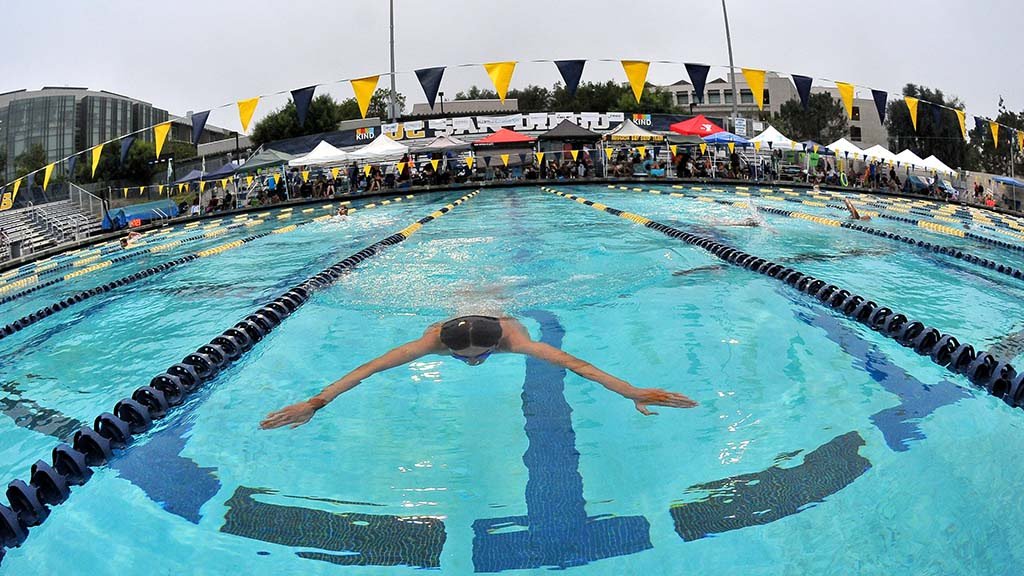 Teams of 12 swimmers each swam from noon Saturday to noon Sunday to raise money for drowning-prevention efforts.