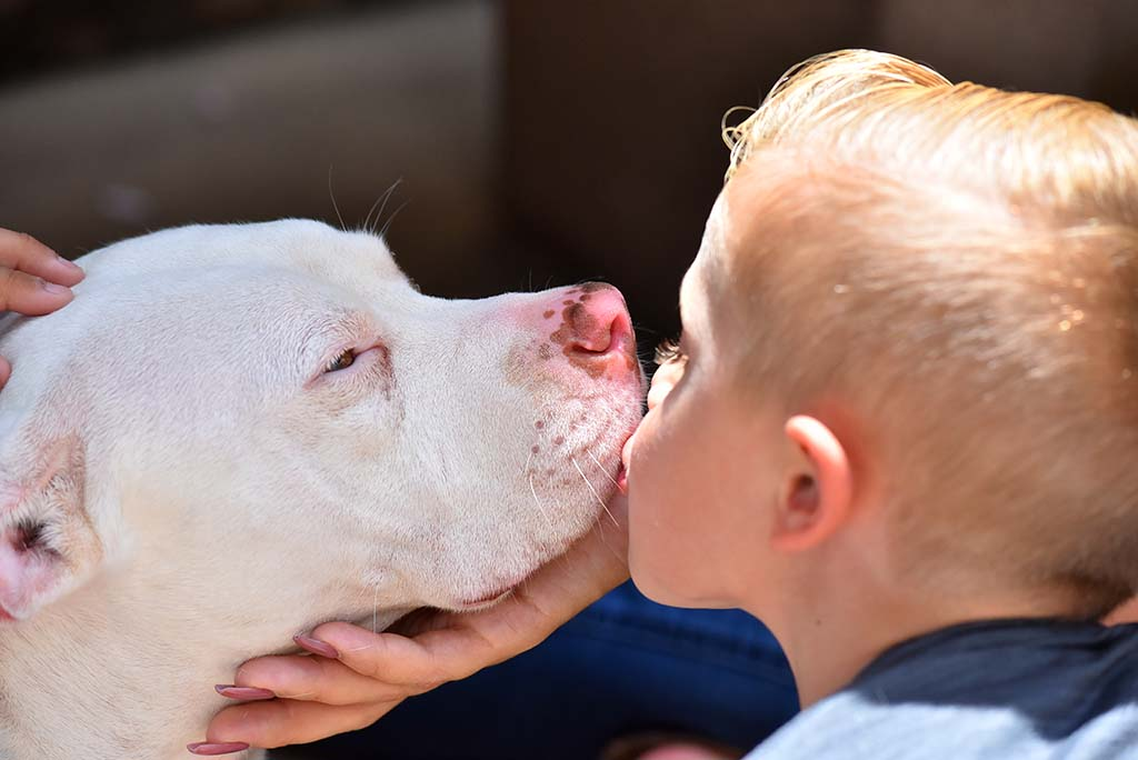 JoJo Anderson, 4, kisses his new canine friend, Amelia, who also is four years old.