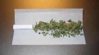 Unrolled marijuana joint