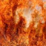 Potrero fire