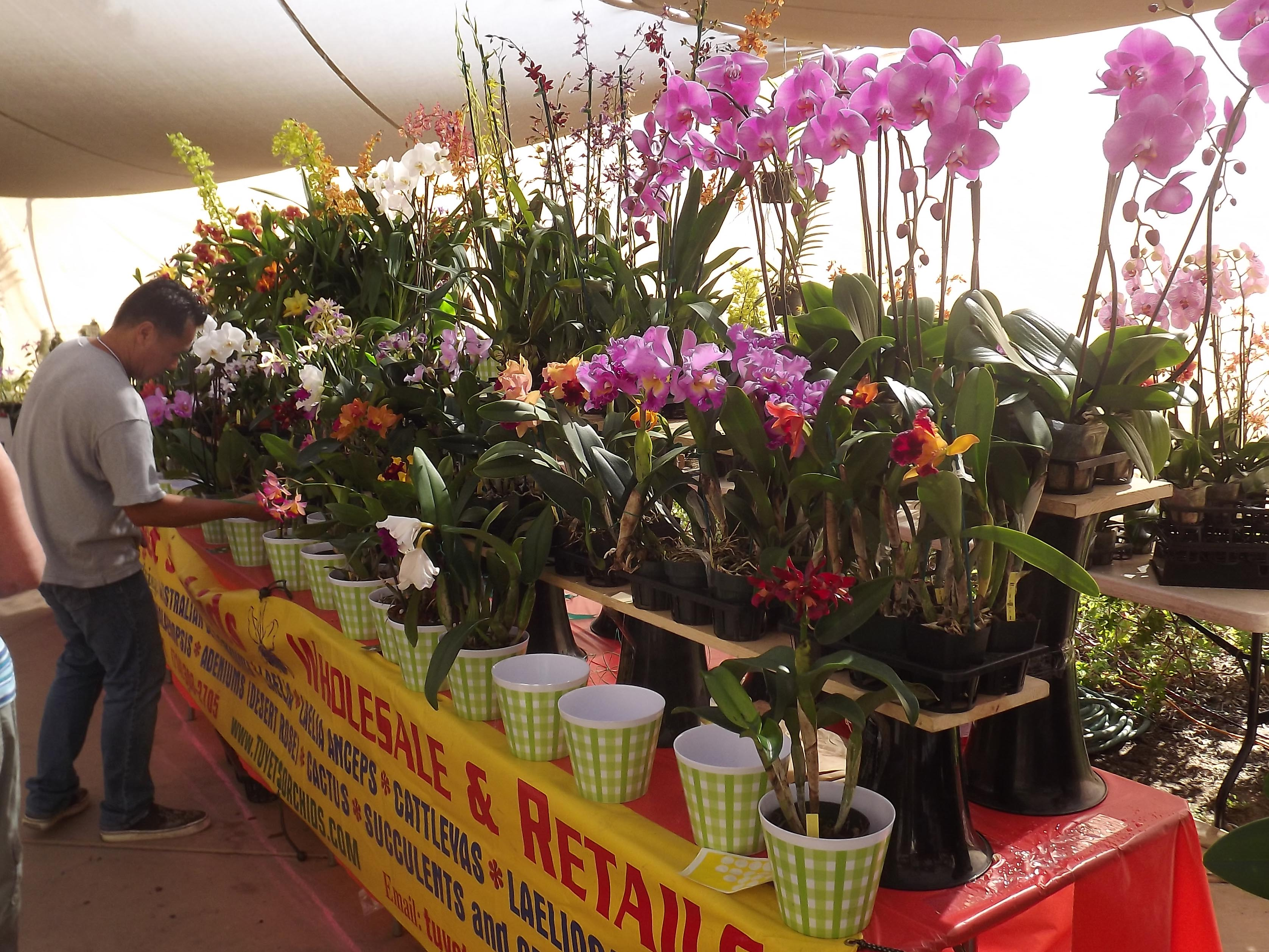 San Diego Botanic Garden Announces Giant Annual Fall Plant Sale ...
