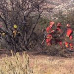 Firefighters at the Ranchita Fire