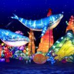 whale-globalwinterland