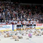 Gulls-teddy-bears