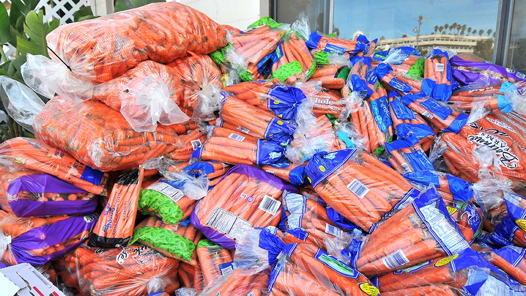 A pile of carrots about six-feet-tall were donated for the horses taken to the Del Mar Fairgrounds.