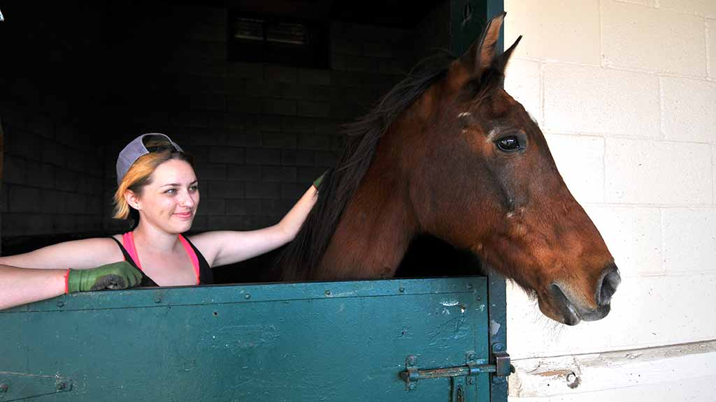 Tess Jerome, 26, of Vista comforts her 26-year-old horse, Beaux.