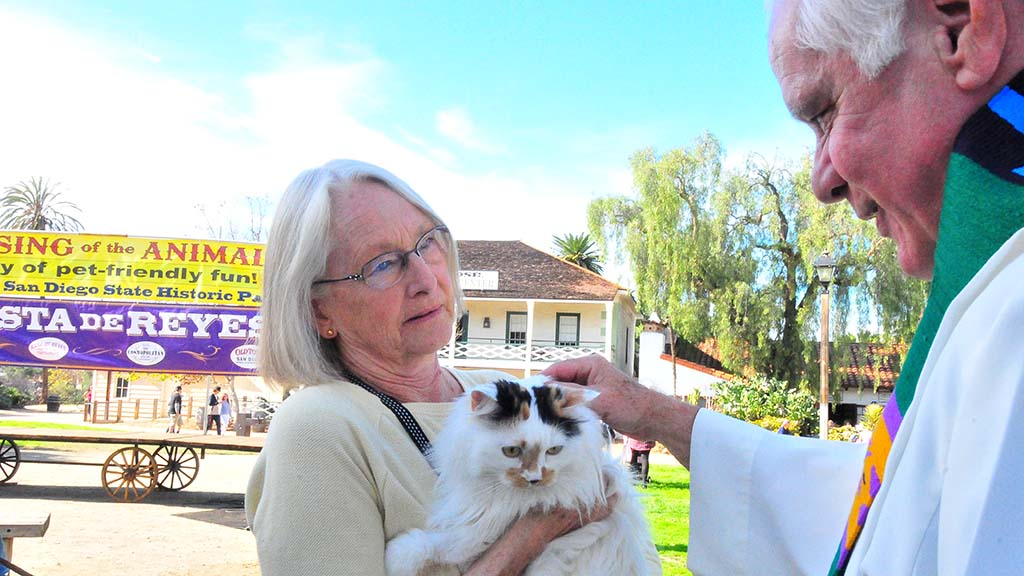 A Turkish Van therapy cat, Lily, is blessed by the Rev. Michael Sinor.