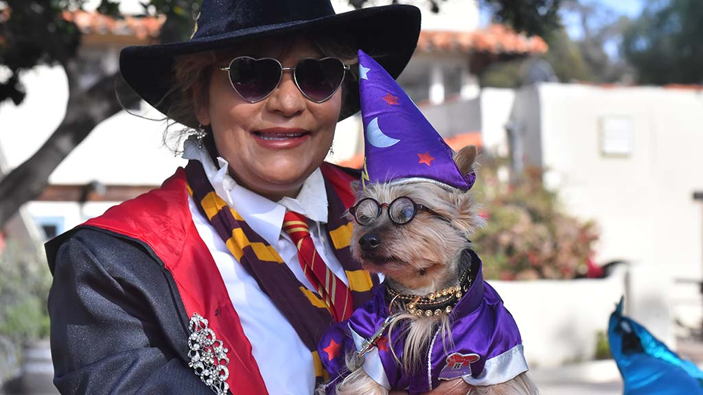 Ruffy, aka Sir Ruffles von Vicious, playing a Hairy Pawter character, with owner Jan Savage won first place in the contest.