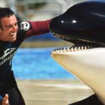 John Hargrove with Kasatka in 2001. The SeaWorld San Diego matriach died in August.