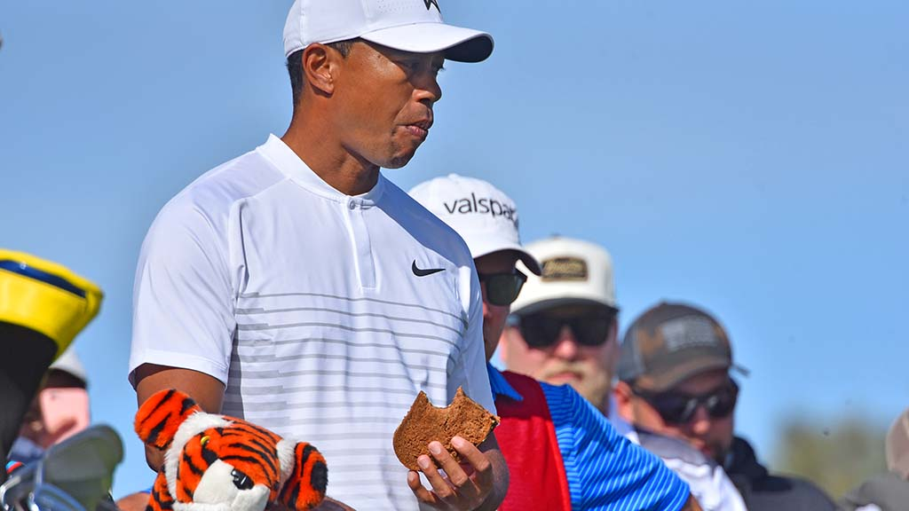 Tiger Woods gets a bite of a sandwich after teeing off on Hole #2.