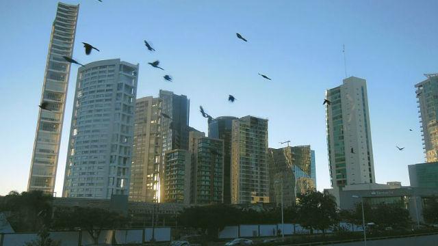 Opinion The Emerging San Diego Guadalajara High Tech Axis