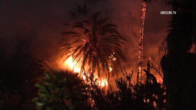 brushfire near Chollas Creek