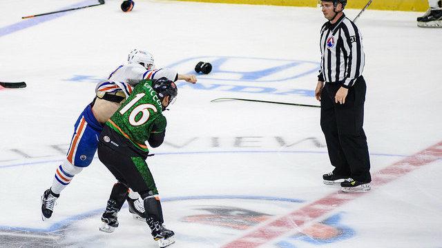 Gulls Austin Ortega Fight