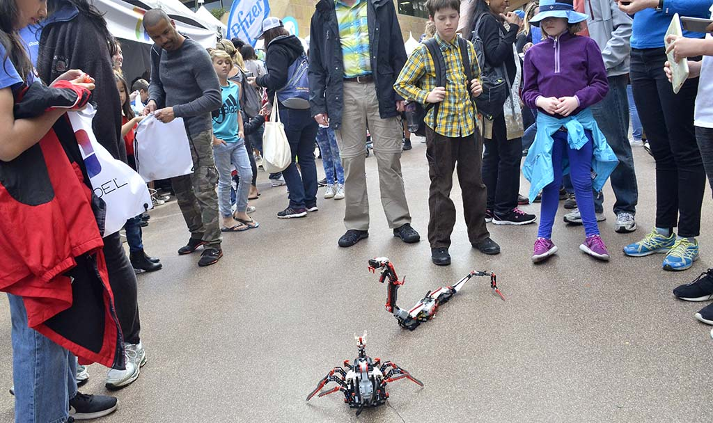 Magnolia Science Academy students showed off their radio-controlled creatures.